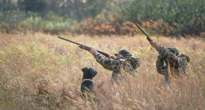 caça-caçadores