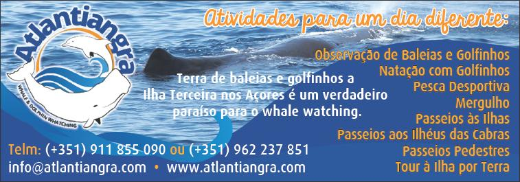Atlantiangra – Whale & Dolphin Whatching