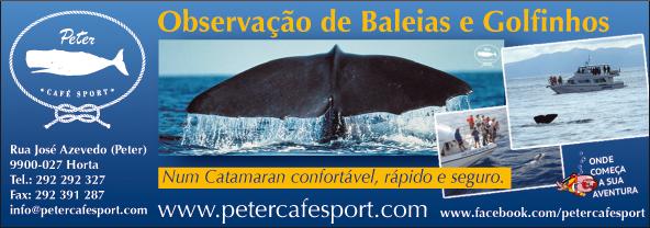 Peter Café Sport