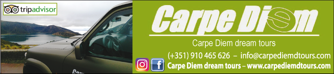 Carpe Diem Dream Tours