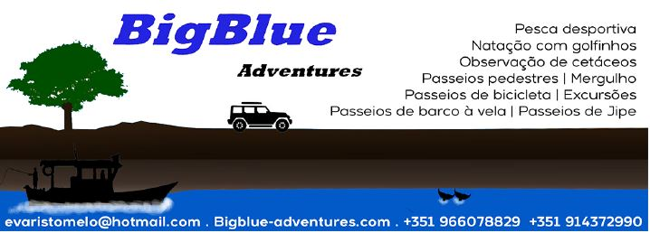 BigBlue Adventures