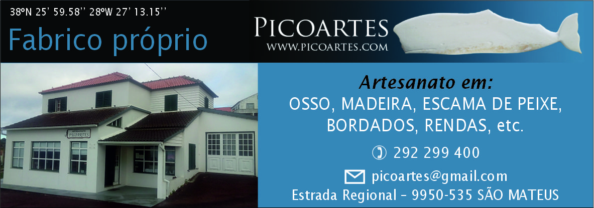 PicoArtes